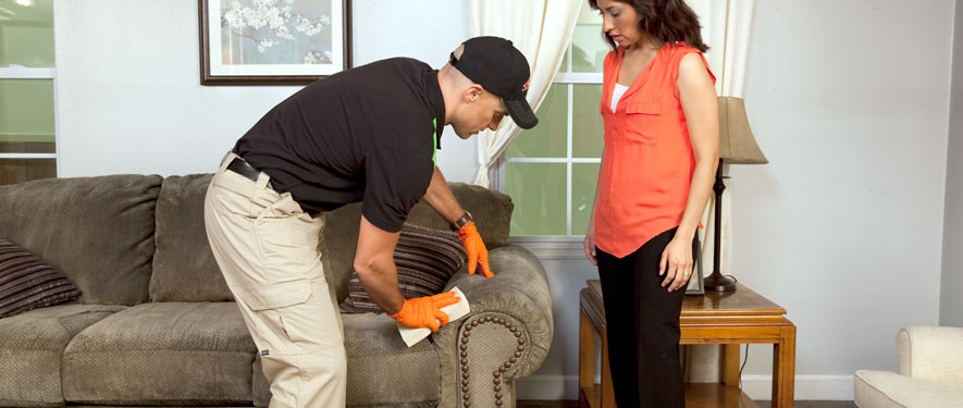 Fox Chase, PA carpet upholstery cleaning